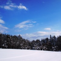 今日は朝から良い天気(*^^*)