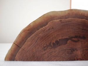 ブラックウォルナット巨木半輪切り2