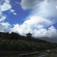 旬花咲く黒姫高原へ20120818