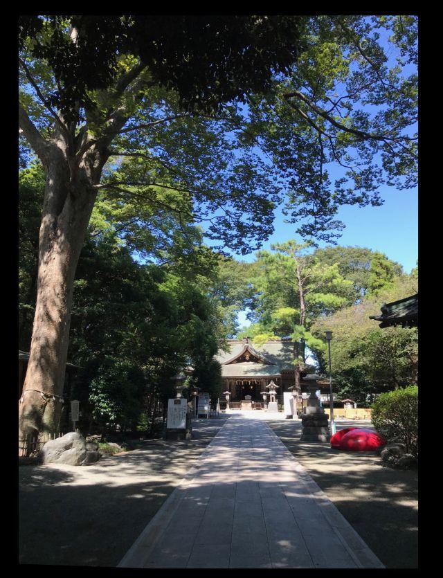 平塚市・前鳥神社20200915-2