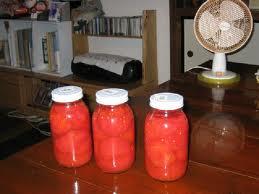 先日いただいた完熟トマトがさらに熟れてきて、これ以上放っておいたらマズイ!という状況まで追い詰められ、やっとトマトの瓶詰めを作りました。