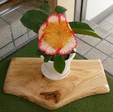 欅一枚板の花台。とっこやさんでご購入いただいたケヤキ耳付き板をご使用になり花台をご製作されました。3点の花台は全て、グラインダーとサンダーで磨かれ、水生ニスで仕上げられたそうです。