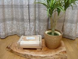ケヤキ材をご使用になりティッシュBOXをご製作されました。普段も写真のように部屋の隅にあるケヤキの板の上に植木とともに置かれているそうです。